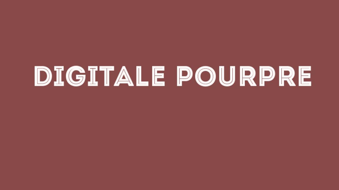 Digitale Pourpre