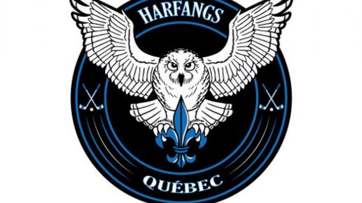 Harfangs de Québec