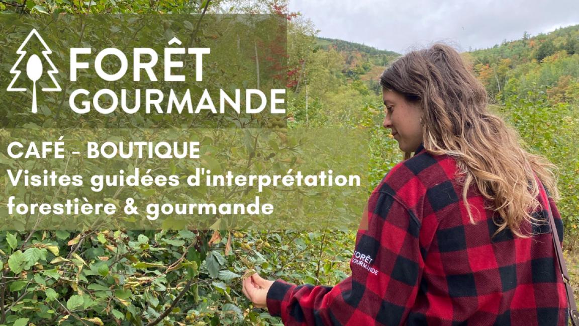 Visites guidées d'interprétation forestière et gourmande