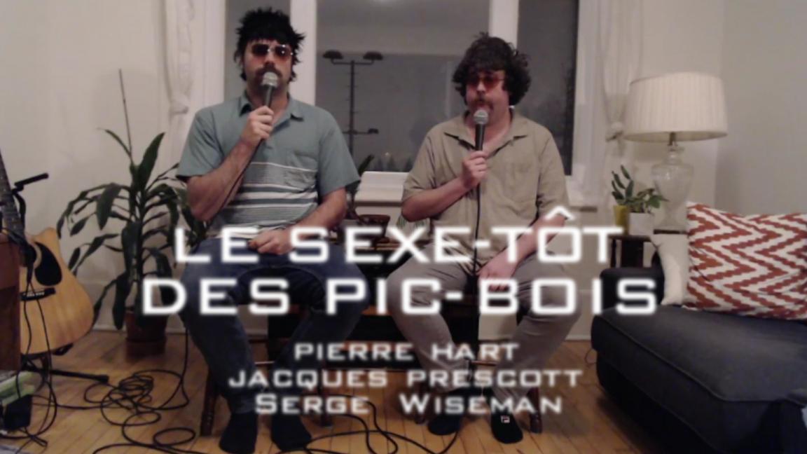 Le Sexe-Tôt des Pic-Bois (Montréal)