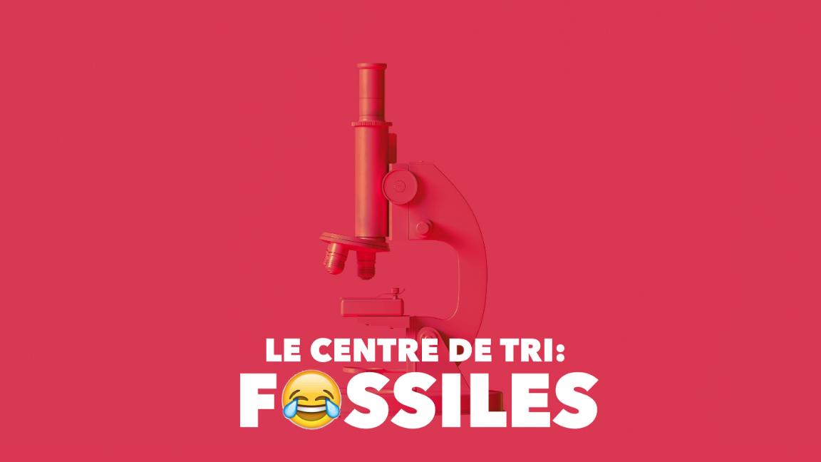 Le Centre de tri : Fossiles