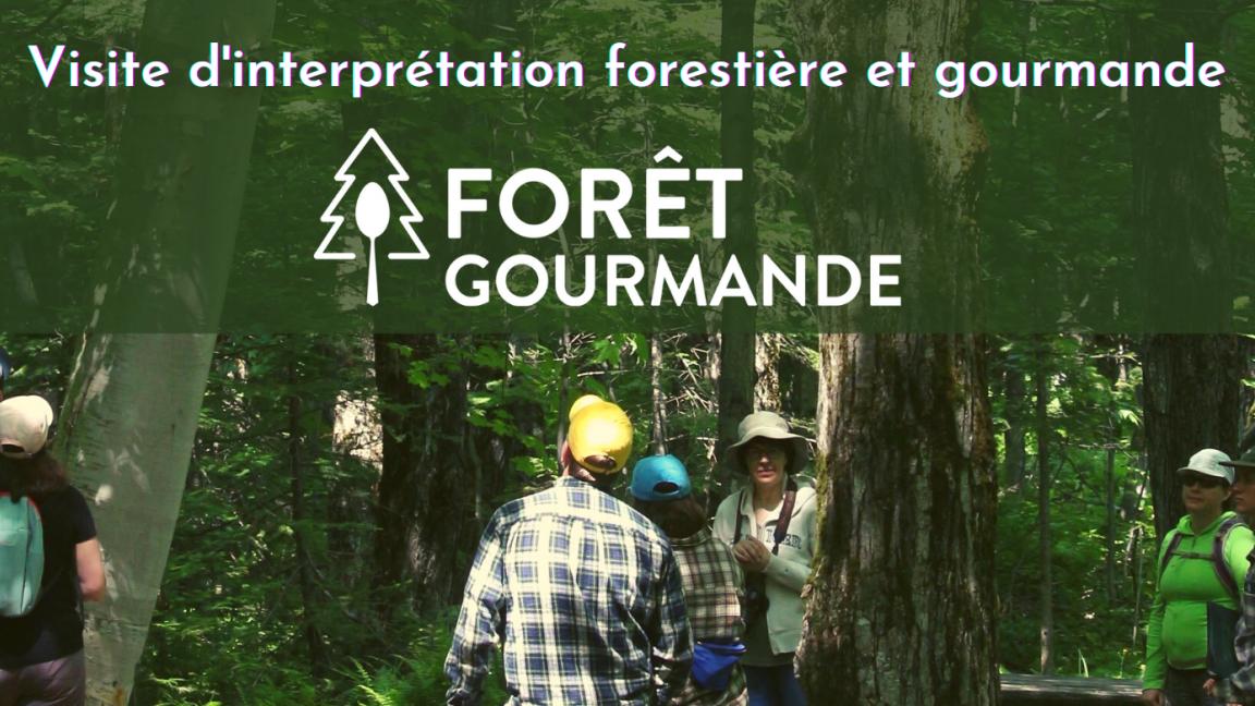 Visite d'interprétation forestière et gourmande   Formule familiale
