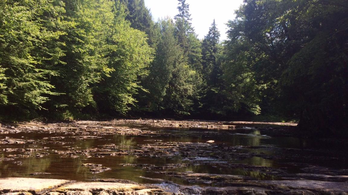 Randonnée à la rivière Henri