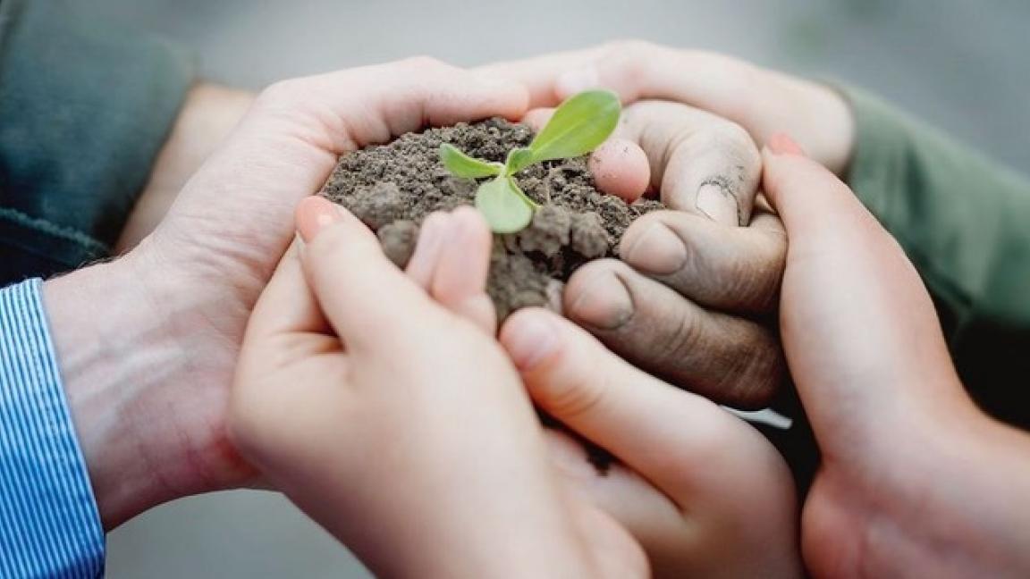 Empotage de plantes (Atelier pour enfant)!
