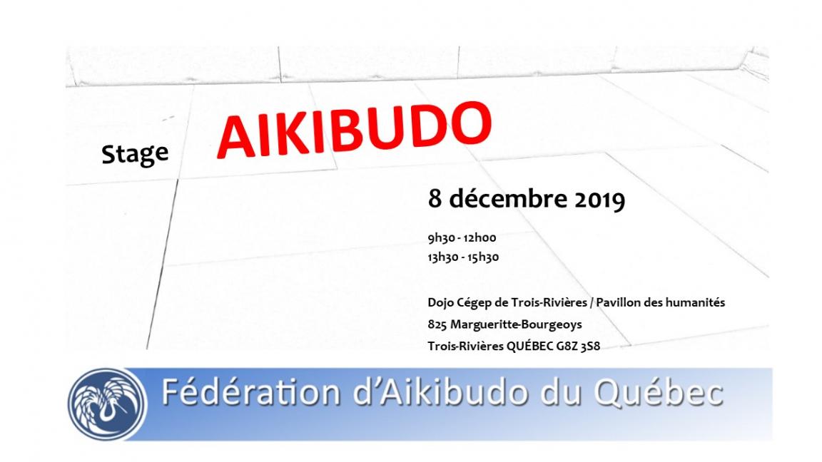 Stage Aikibudo