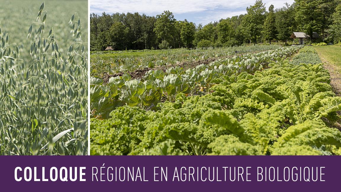 Colloque régional en agriculture biologique