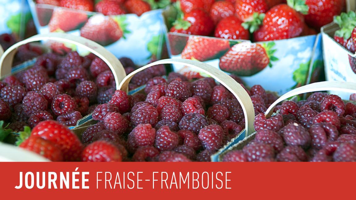 Journée fraise-framboise