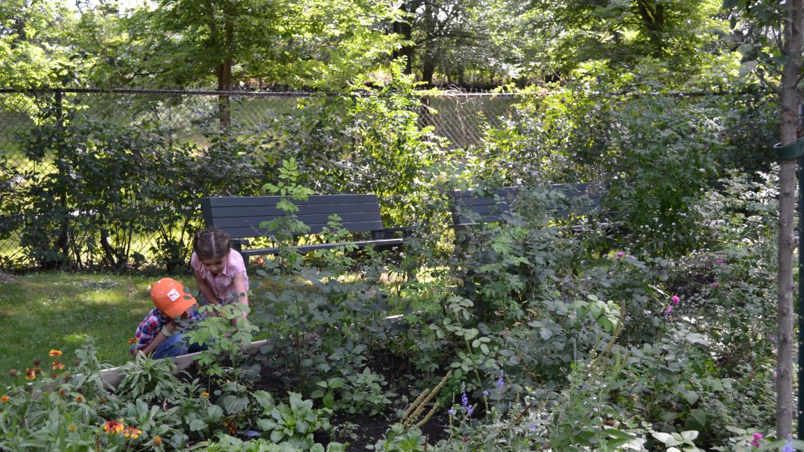 Parcours des arboriculteurs en herbe et mission des apprentis apiculteurs