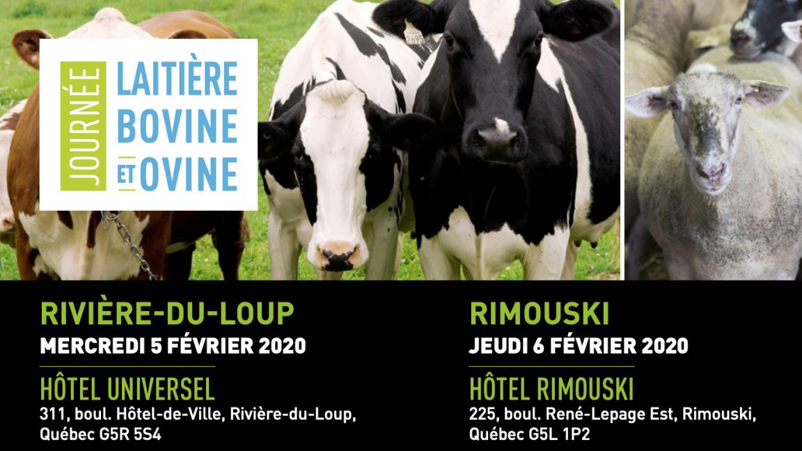 Journée laitière, bovine et ovine 2020