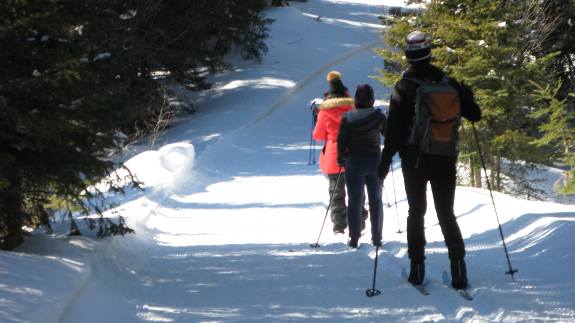 Cross country skiing and snowshoeing at the Forêt Montmorency - December 16th
