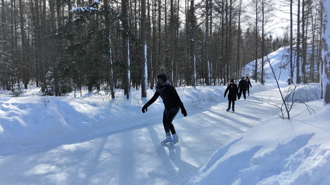 Skating in the Parc du Grand-Héron