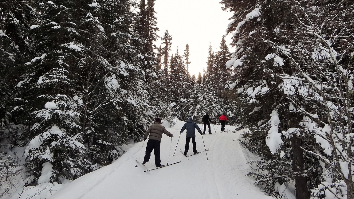 Cross country skiing and snowshoeing at the Forêt Montmorency - March 17th