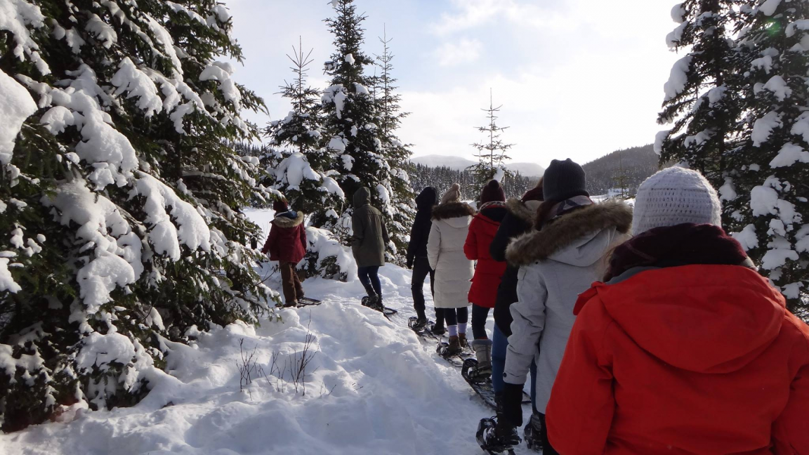 Cross country skiing and snowshoeing at the Forêt Montmorency - January 26th