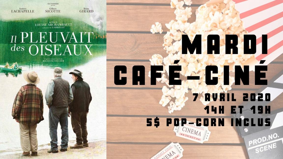 REPORTÉ - Café-ciné : Il pleuvait des oiseaux