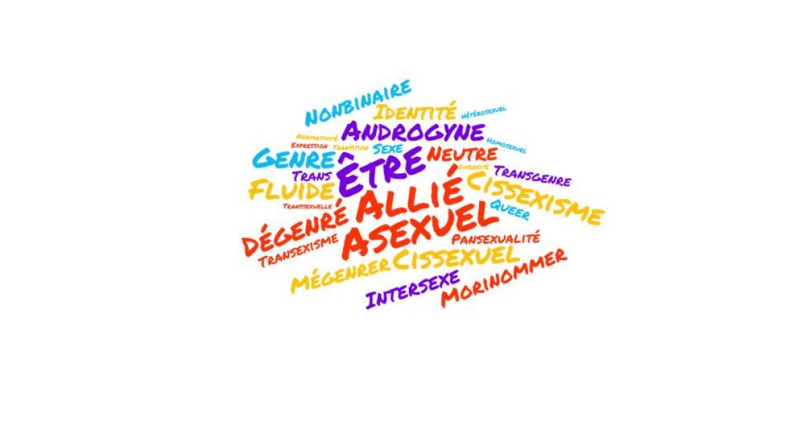 Conférence sur la Diversité sexuelle - LGBTQIA2SNB