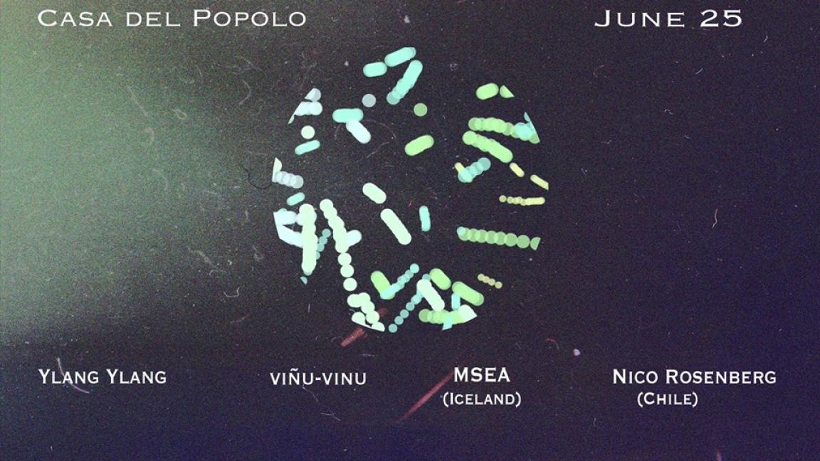 YlangYlang / viñu-vinu / MSEA / Nico Rosenberg