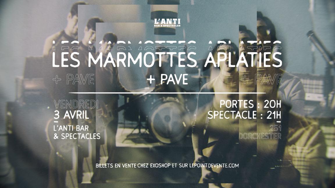 Marmottes Aplaties