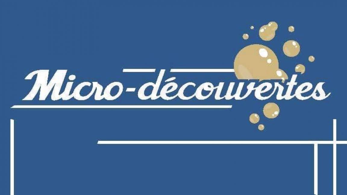 Micro-découvertes