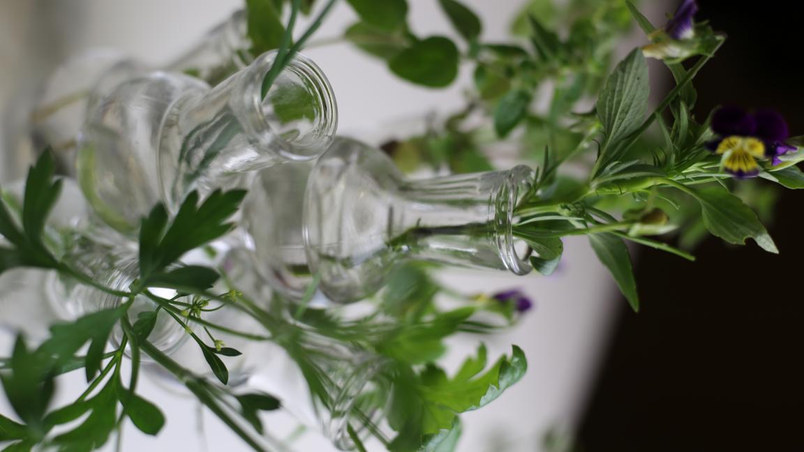 Les Fines Herbes par Élodie Fleuriste