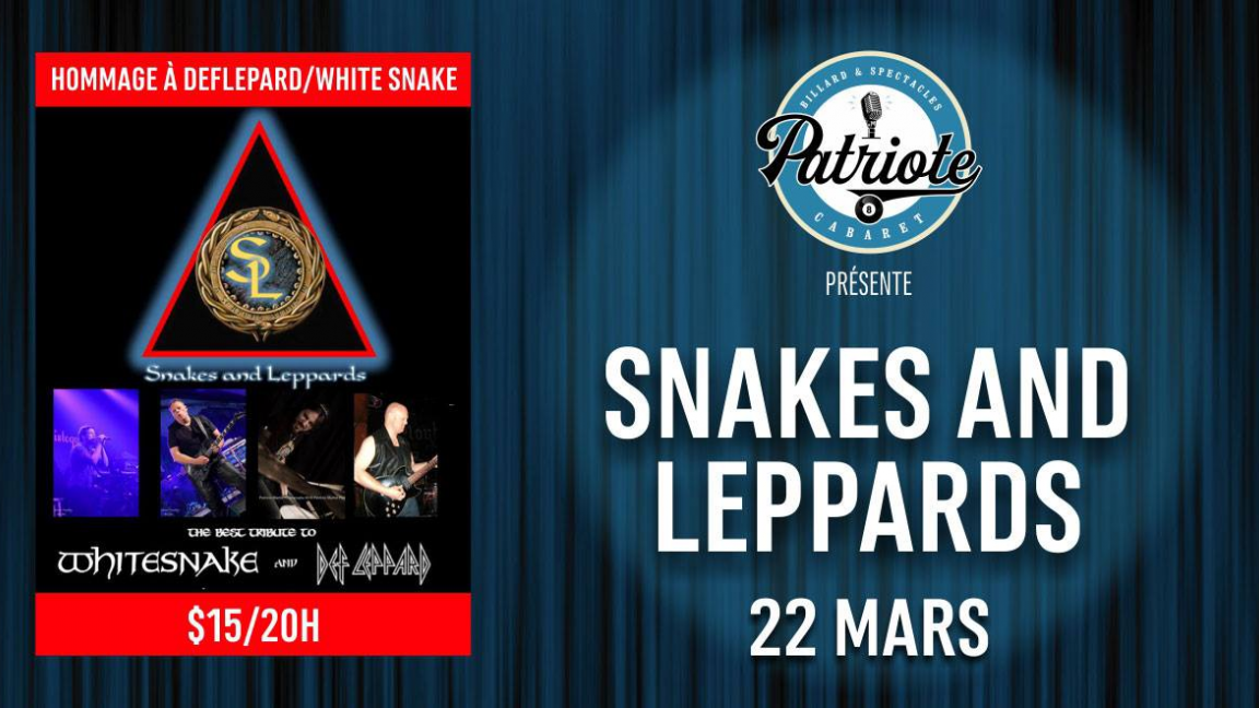 hommage a def leppard & snake and leppards
