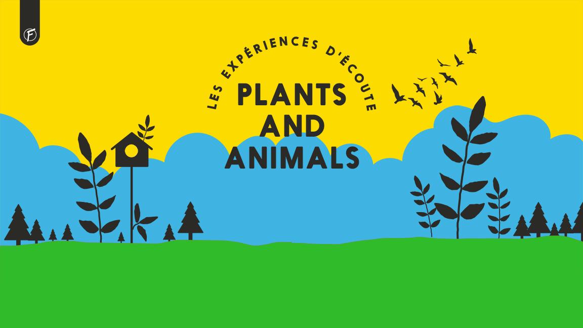 Expérience d'écoute - Plants and Animals - Chansons inédites
