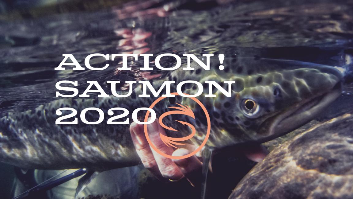 Action Saumon! Québec
