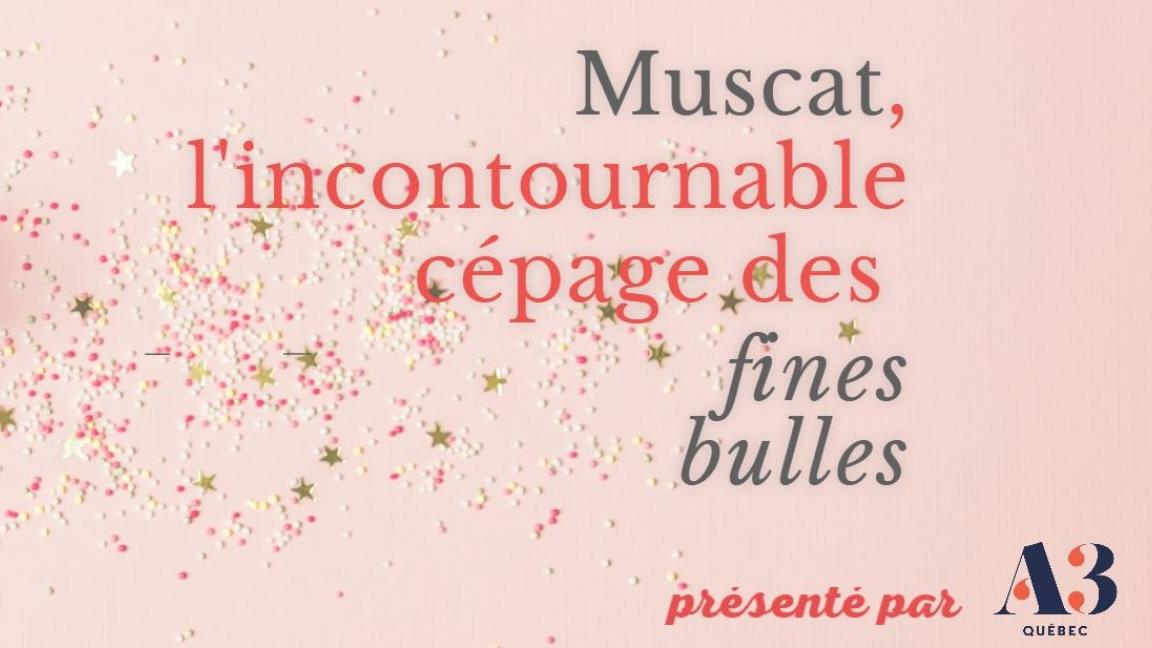 Webinaire Muscat, l'incontournable cépage des fines bulles