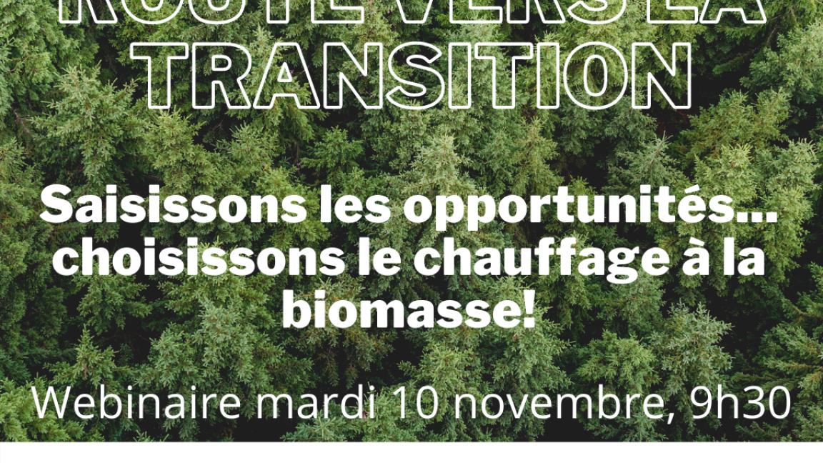 Chauffage à la biomasse : est-ce une solution adaptée à mon entreprise?