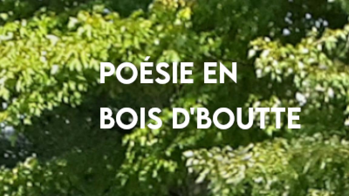 Poésie en bois d'boutte // Vendredis Sains