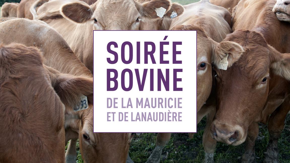 Soirée bovine de la Mauricie et de Lanaudière