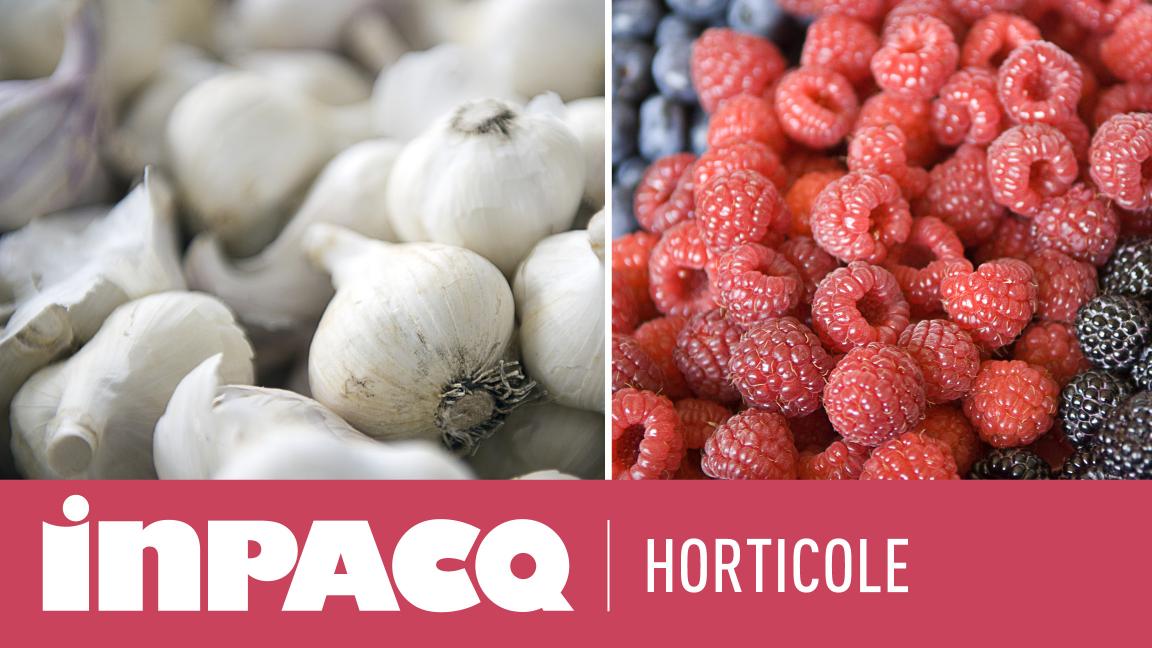 INPACQ Horticole