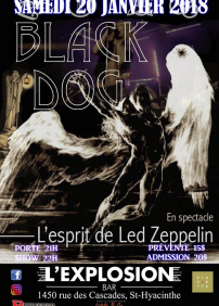 Black Dog - Hommage à Led Zeppelin