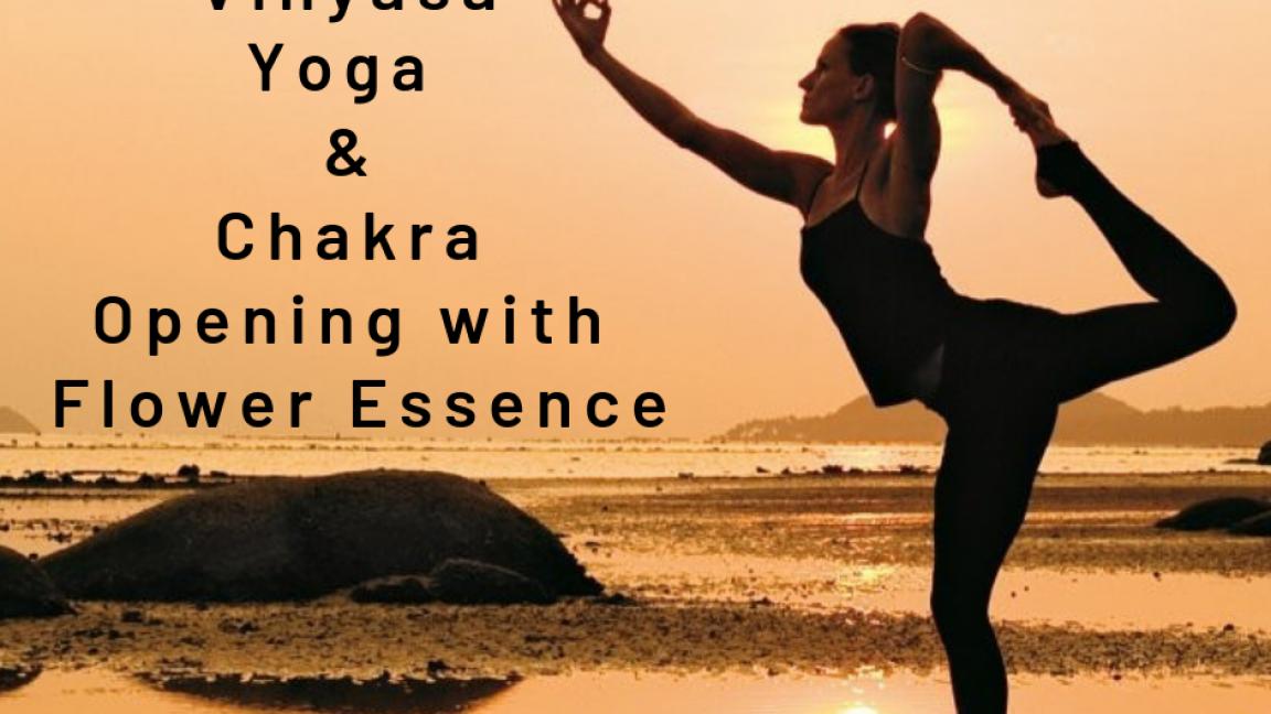 Semi-private Vinyasa Yoga & Chakra Opening