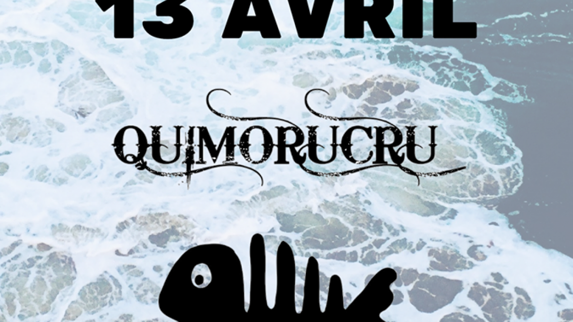 Party Gaspésien avec Quimorucru