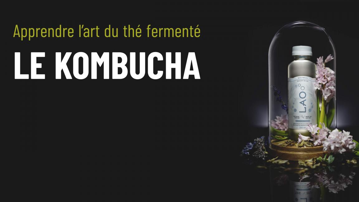 Apprendre l'art du thé fermenté: Le Kombucha
