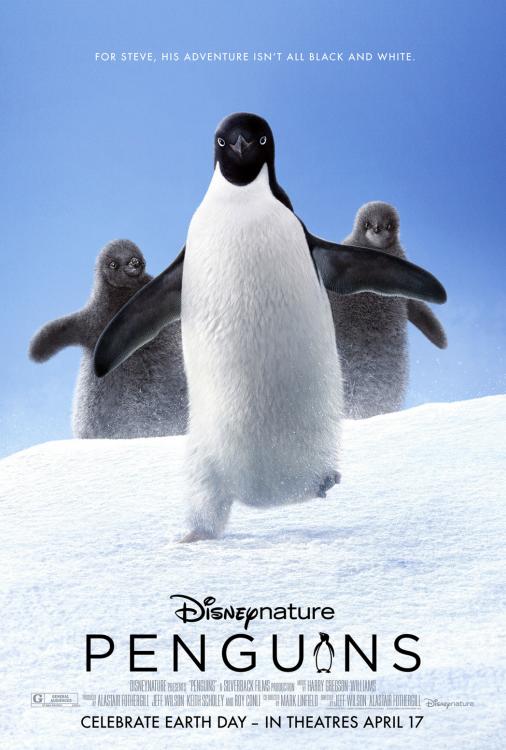 Pingouins V.F.
