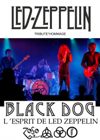 Black Dog L'esprit de Led Zeppelin