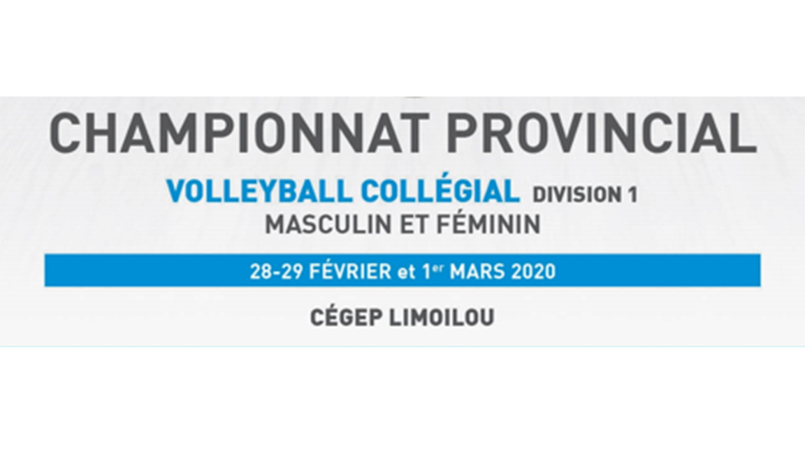 Championnat provincial volleyball D1