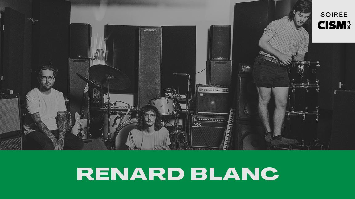 RENARD BLANC #CCF20