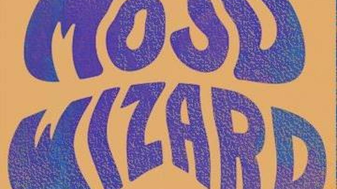 ACID TEST : VOL 2 / Mojo Wizard + Invité