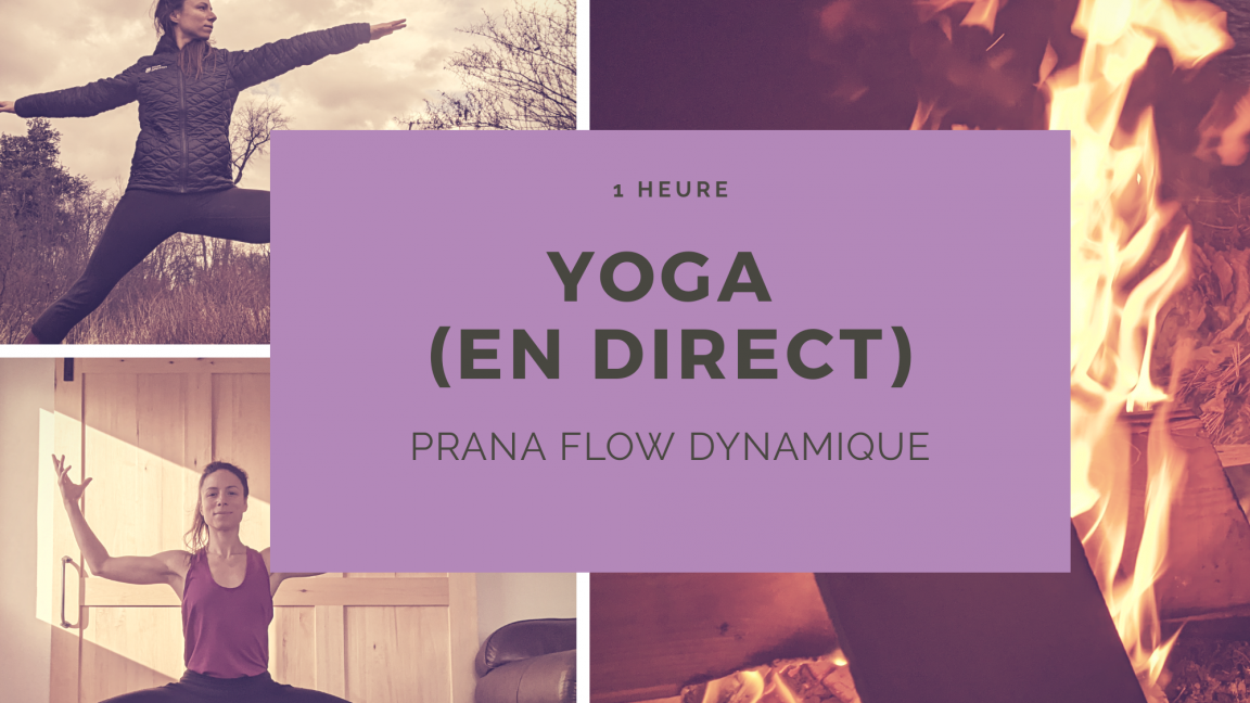Yoga {En Direct + Rediffusion} Prana Flow Dynamique (1H) - 12$