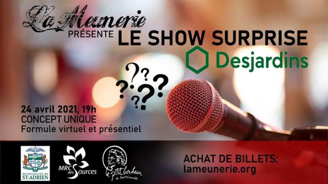 Show Surprise Desjardins 2021 (en salle)