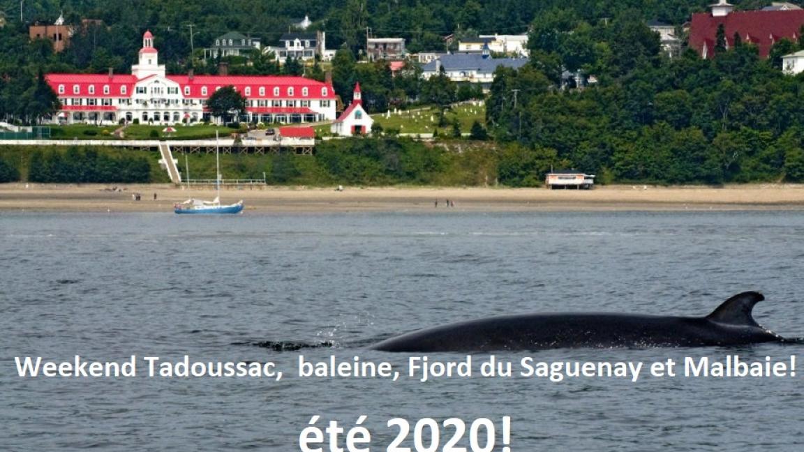 Weekend Tadoussac et croisière baleines. 2 jours une nuit. (11- 12 JUILLET)
