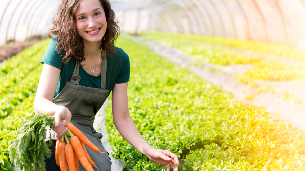 Séance d'information - Gestion d'entreprises agricoles