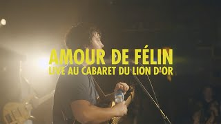 Émile Bilodeau - Amour de félin [version live]
